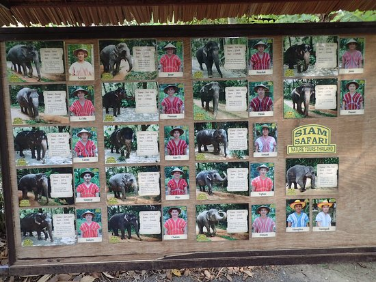 Chalong, Thailand: Our visit to Siam Safari - April 2016