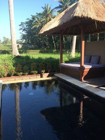 Bhanuswari Resort & Spa: Private plunge pool