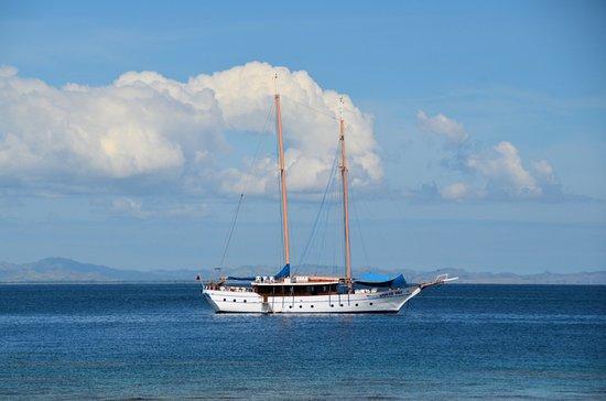 Denarau Island, Fiji: The Whales Tale moored off our lunch Island