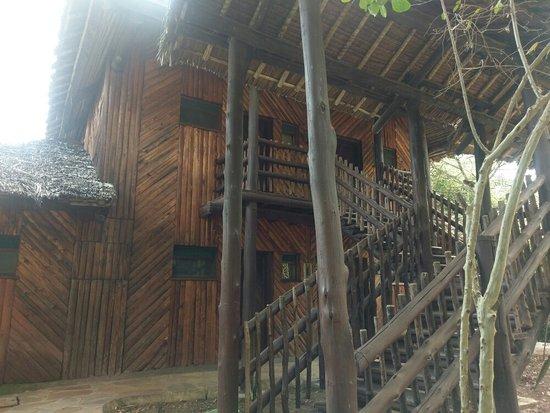 Mara Simba Lodge 사진
