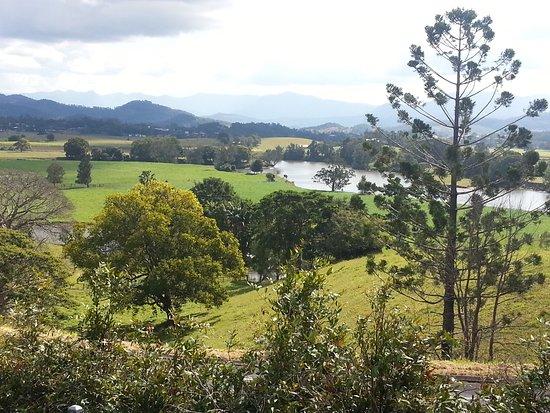 Murwillumbah, Australien: Tweed River valley from Art Centre