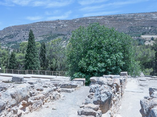 Knossos Archaeological Site: Set in a beautiful, fertile valley