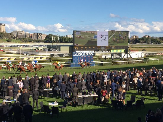 Randwick, Australie : the view from the historic members terrace