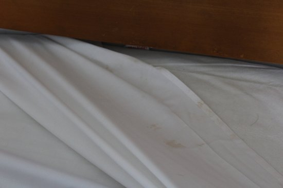 Sunny Hill Hotel Apartments: stained sheets