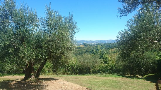 Montelaguardia, Italien: View from the villa
