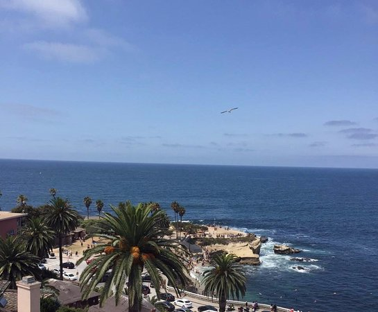 George S At The Cove La Jolla And Pacific From Ocean Terrace