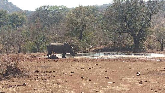 Malelane, Republika Południowej Afryki: IMG_20160821_102355_large.jpg