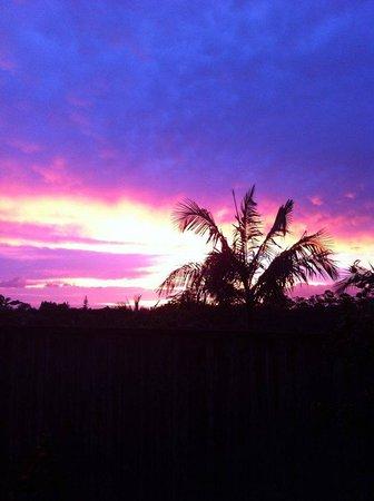 Kerikeri, Nowa Zelandia: sunrise behind the hostel, just before we left for the packhouse
