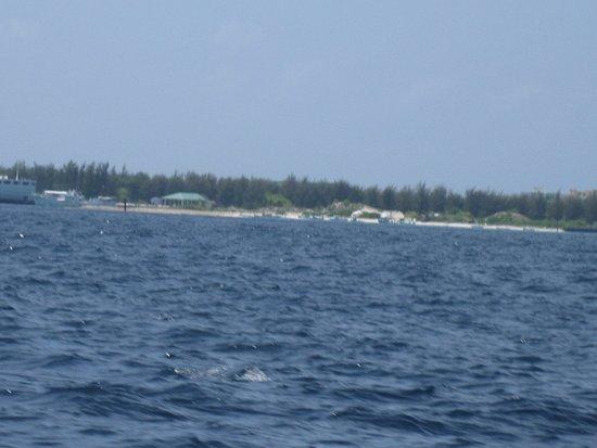 Raa Atoll: вид 1