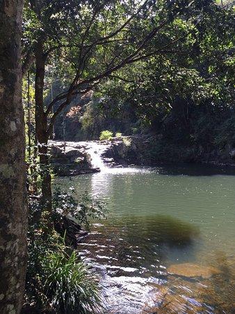Maleny, Avustralya: photo1.jpg