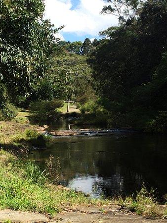Maleny, Avustralya: photo3.jpg