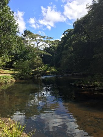 Maleny, Avustralya: photo5.jpg