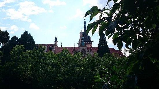 Průhonice, Tjekkiet: Заросли старого замка.