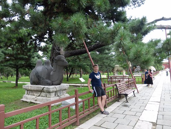 Shenyang, Κίνα: В парке