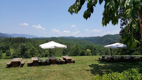 Walland, TN: View from the porch of the restaurant looking over the valley