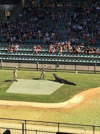 Australia Zoo: photo2.jpg