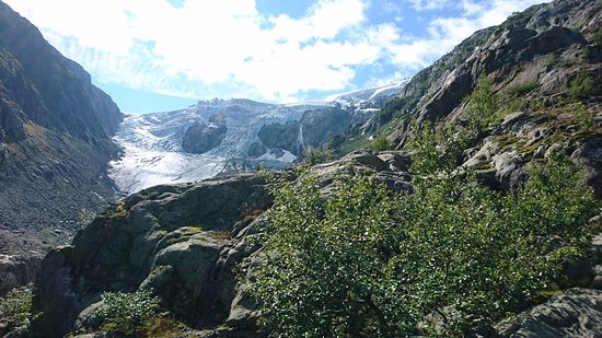Buarbreen: Blick zum Gletscher in der Sonne