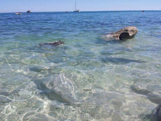 Il più bel posto dell'Adriatico