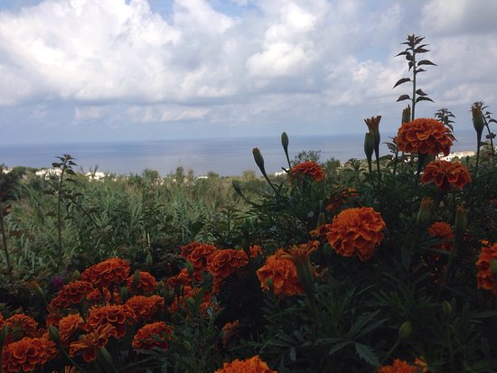Paradiso Terme Resort & Spa: La Vacanza perfetta!