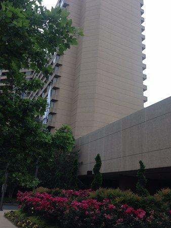 Crystal Gateway Marriott Foto