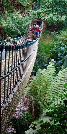 St Austell, UK: The rope bridge