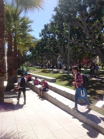 California State University Long Beach: Upper campus