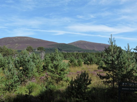 Aviemore, UK: Mountain range from park