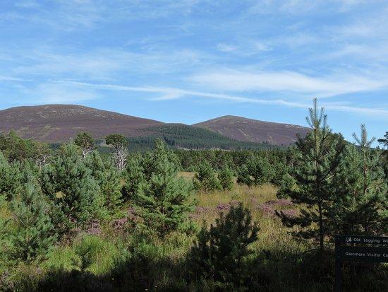 Aviemore, UK: Mountain range from park