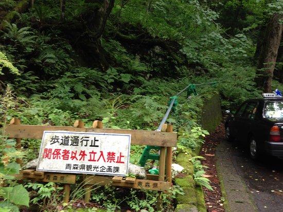 Foto Towada