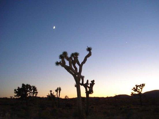 Twentynine Palms, CA: Tramonto al parco