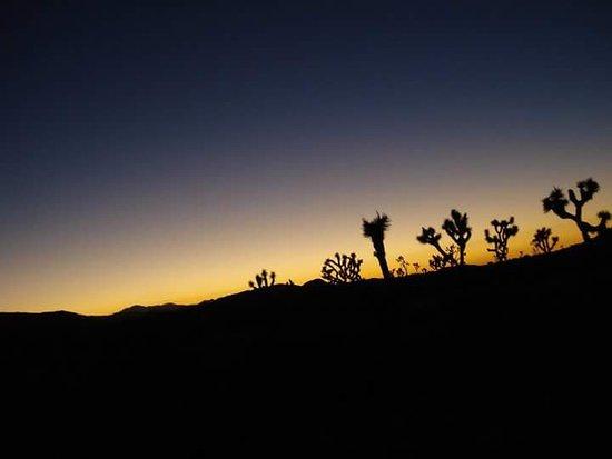 Twentynine Palms, Californie : Tramonto al parco