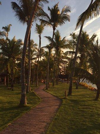 Arraial D'Ajuda Eco Resort: area de caminhada