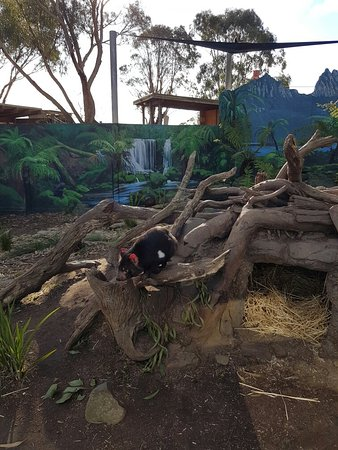Grantville, Australien: 20160814_152525_large.jpg