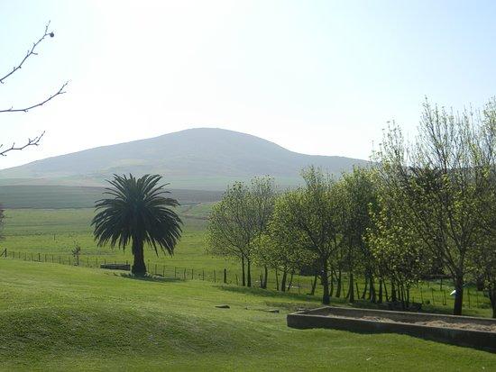 Снимок Durbanville