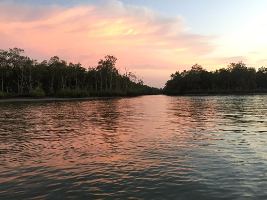 Kuching Wetlands National Park: No words - Xplorermind
