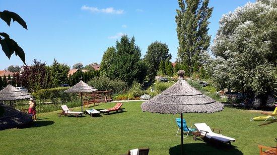 Hotel Orchidea Lipot Photo