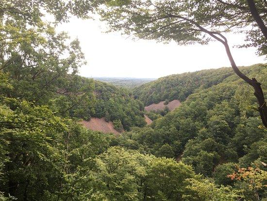 Skane County รูปภาพ