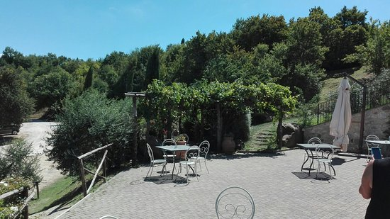 San Venanzo, Italia: IMG_20160823_125153_large.jpg