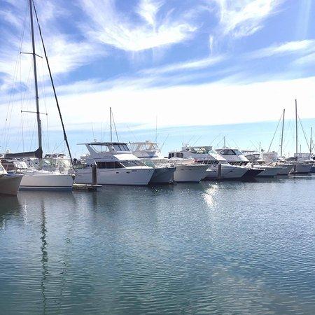 Nelson Bay, Australien: Stunning views