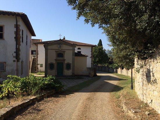 Fattoria Isola: photo4.jpg