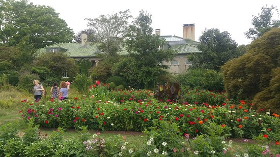 Waterford, CT: Gardens off the coach house