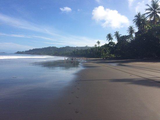 Osa Peninsula, Costa Rica: Verso N_E, bassa marea, Sole del mattino.