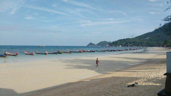 Seashell Resort Koh Tao: IMG-20160823-WA0004_large.jpg