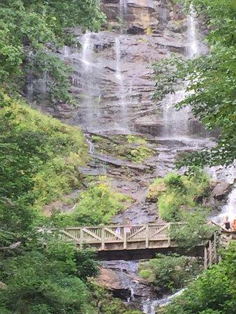 Amicalola Falls State Park: photo5.jpg