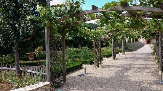 Dans Le Jardin Belle Pergola Decoree De Pieds De Vignes Picture Of La Maison Saint Martin Perigueux Tripadvisor