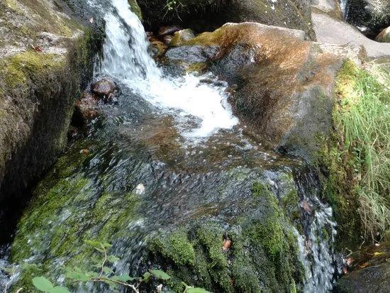 Manaton, UK: Obligatory water fall shot