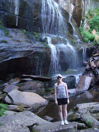 Tellico Plains, TN: Falls Branch Falls