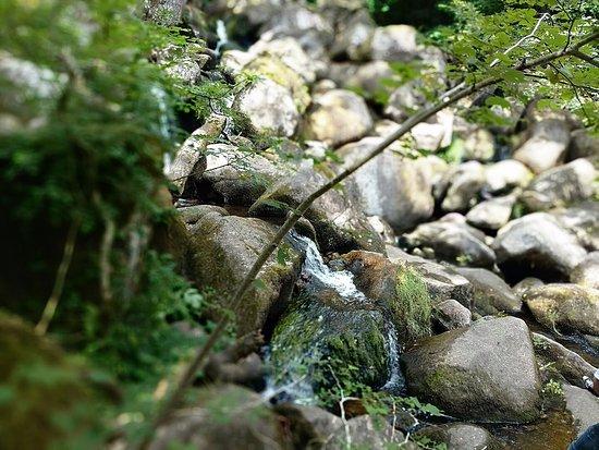 Manaton, UK: Obligatory water fall shot 2
