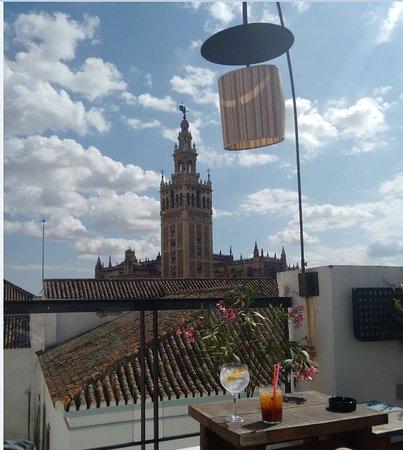 Vistas A La Giralda Picture Of Pura Vida Terraza Seville
