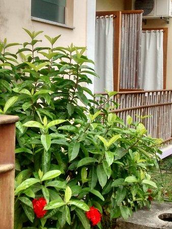 Pousada do Tie : Detalhe de planta florida. Varanda dos quartos